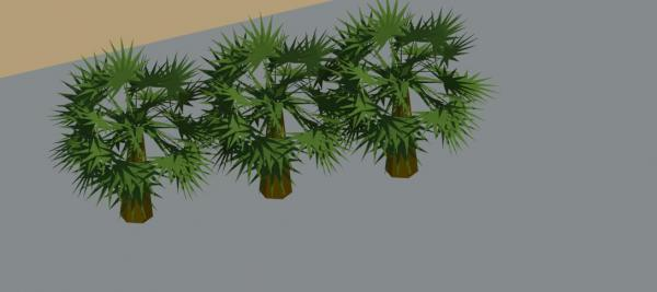 Object Cactus Sabal Plant