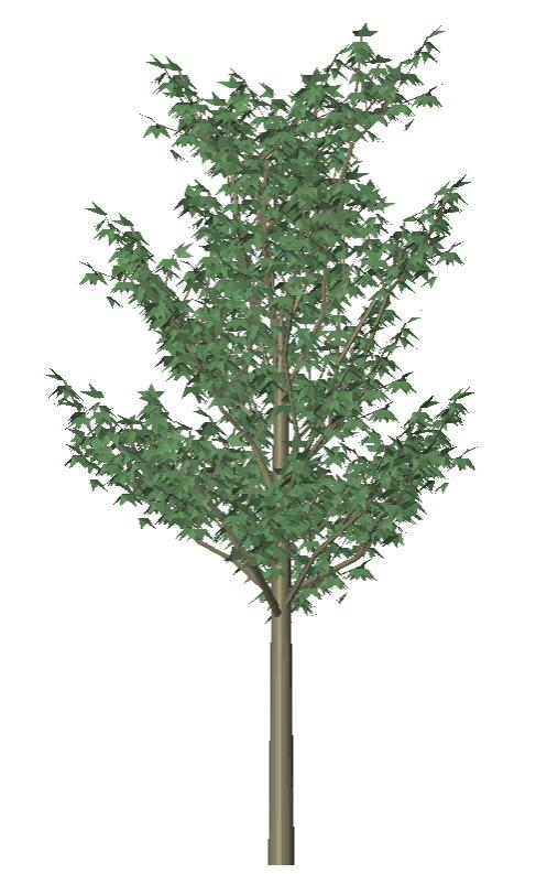 RevitCity com | Object | 3d tree a_tree22x 3d trees