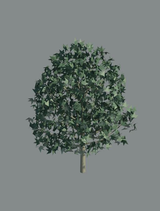 RevitCity com | Object | 3d tree a_tree35